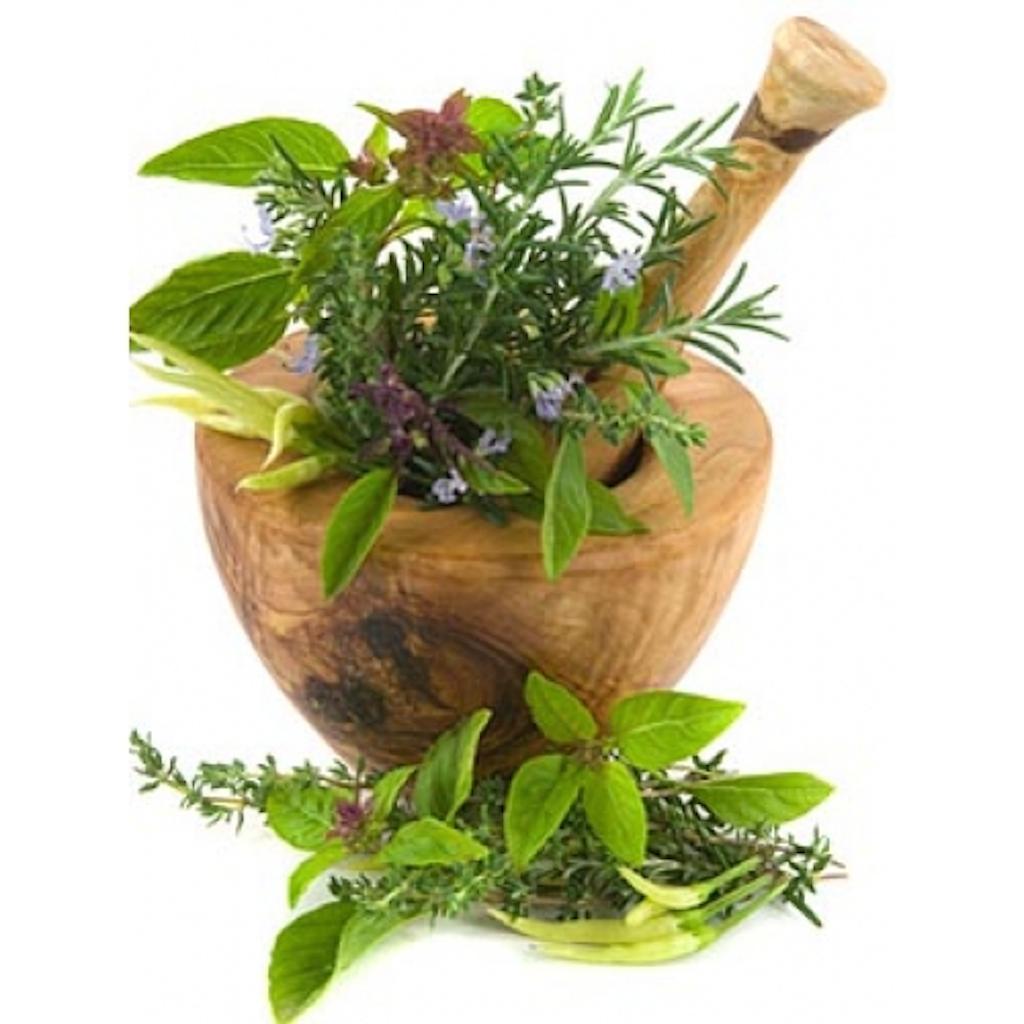 medicinal plants and urolithiasis Antilithiatic influence of butea monosperma lam and urolithiasis, butea monosperma, nigella sativa, unani medicinal plants.